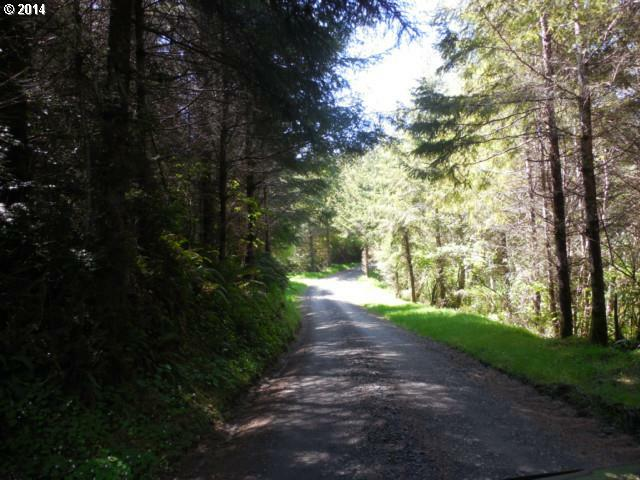 Lindross Arm, Lakeside, OR - USA (photo 4)