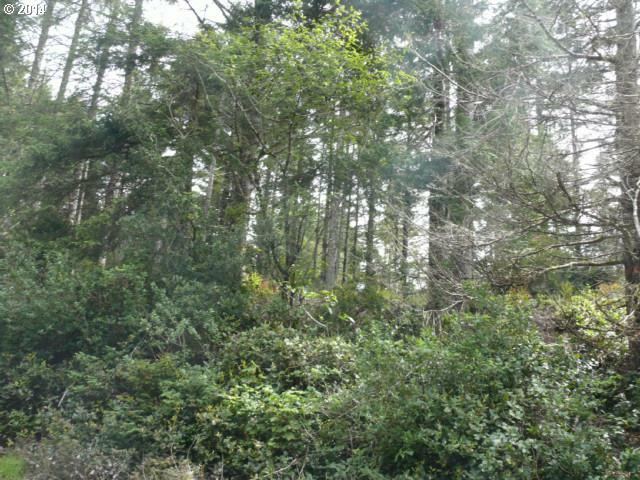 63930 Seven Devils Rd, Coos Bay, OR - USA (photo 3)
