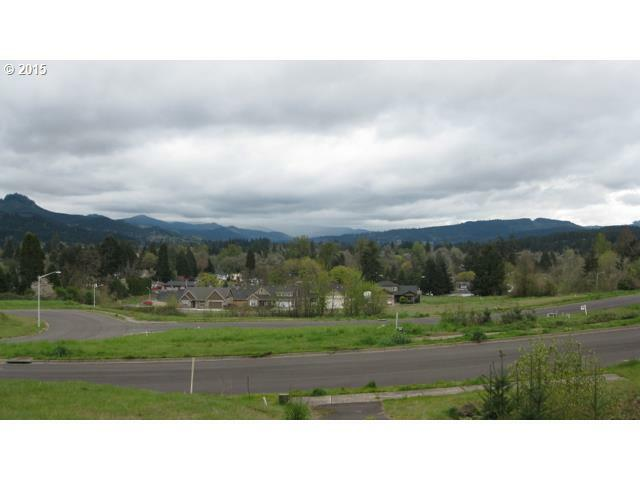 700 N M St 41, Cottage Grove, OR - USA (photo 1)