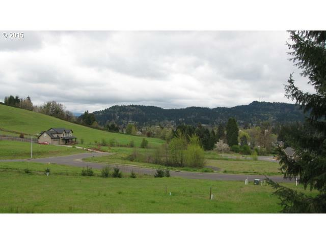1454 Elm Ave 60, Cottage Grove, OR - USA (photo 4)