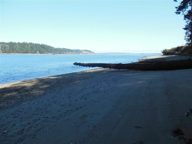 11605 Larson Rd, Anderson Island, WA - USA (photo 2)