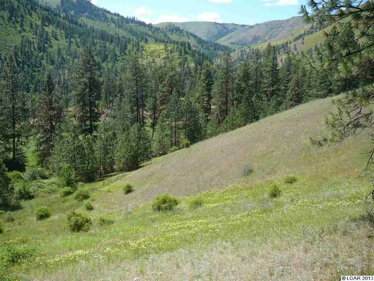 Tbd Pardee Rd, Kamiah, ID - USA (photo 1)
