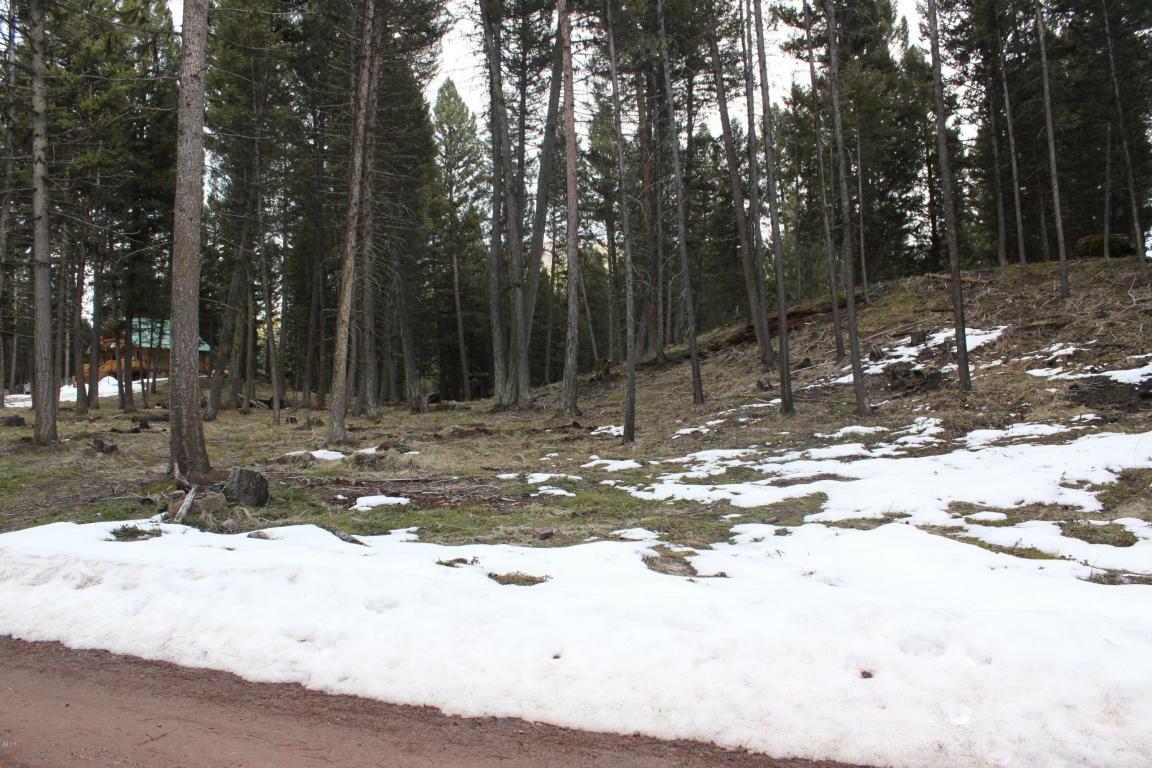 175 Moose Lane, Seeley Lake, MT - USA (photo 2)