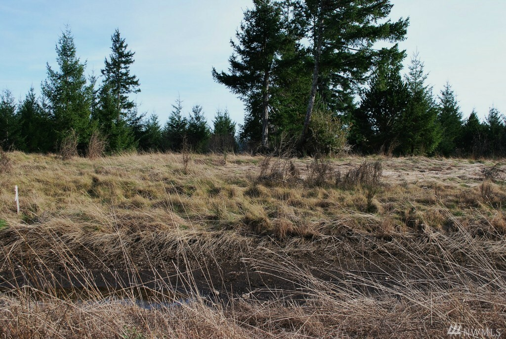 10 Cottonwood Dr, Grapeview, WA - USA (photo 4)
