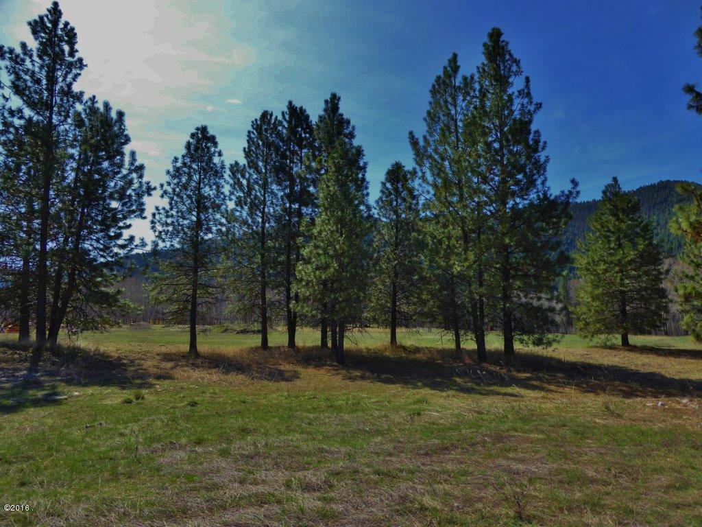 Lot 50 Turah Meadows, Clinton, MT - USA (photo 3)