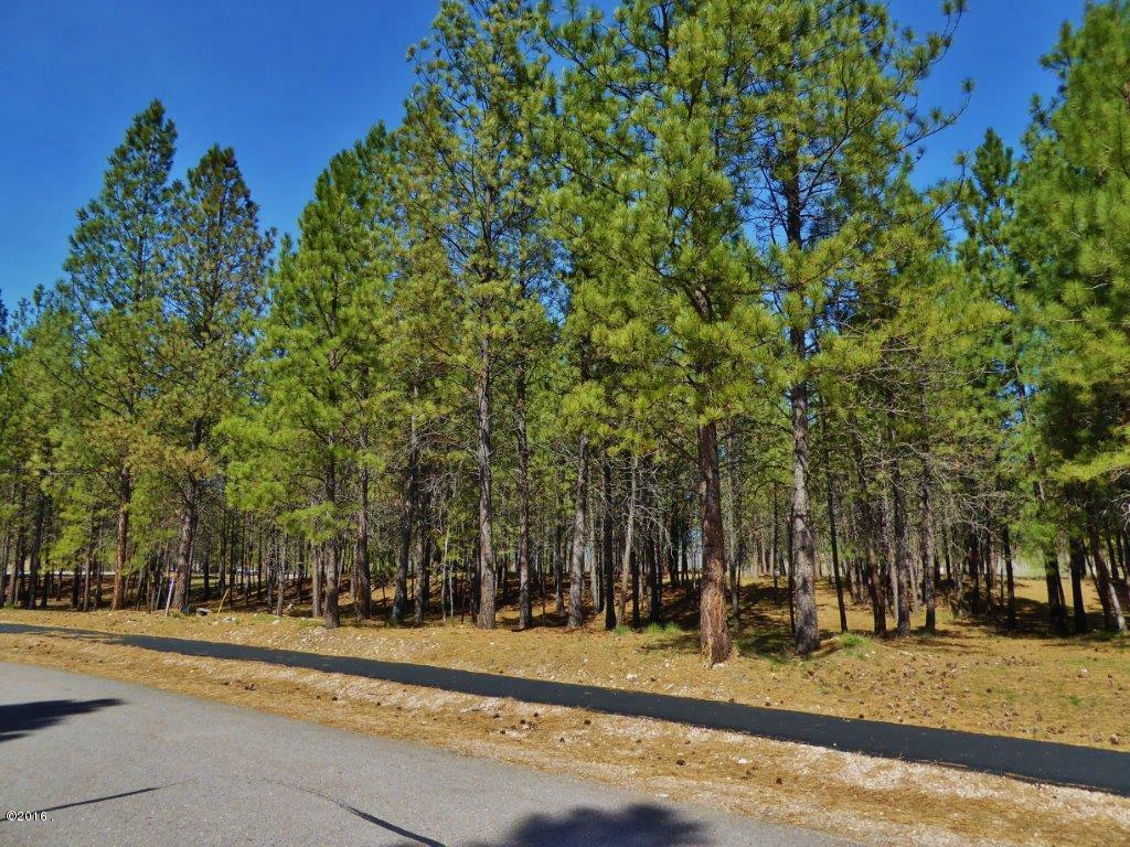 Lot 13 Turah Meadows, Clinton, MT - USA (photo 1)