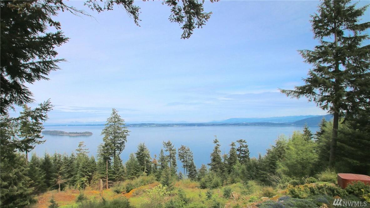 1244 Forest Lane, Orcas Island, WA - USA (photo 2)