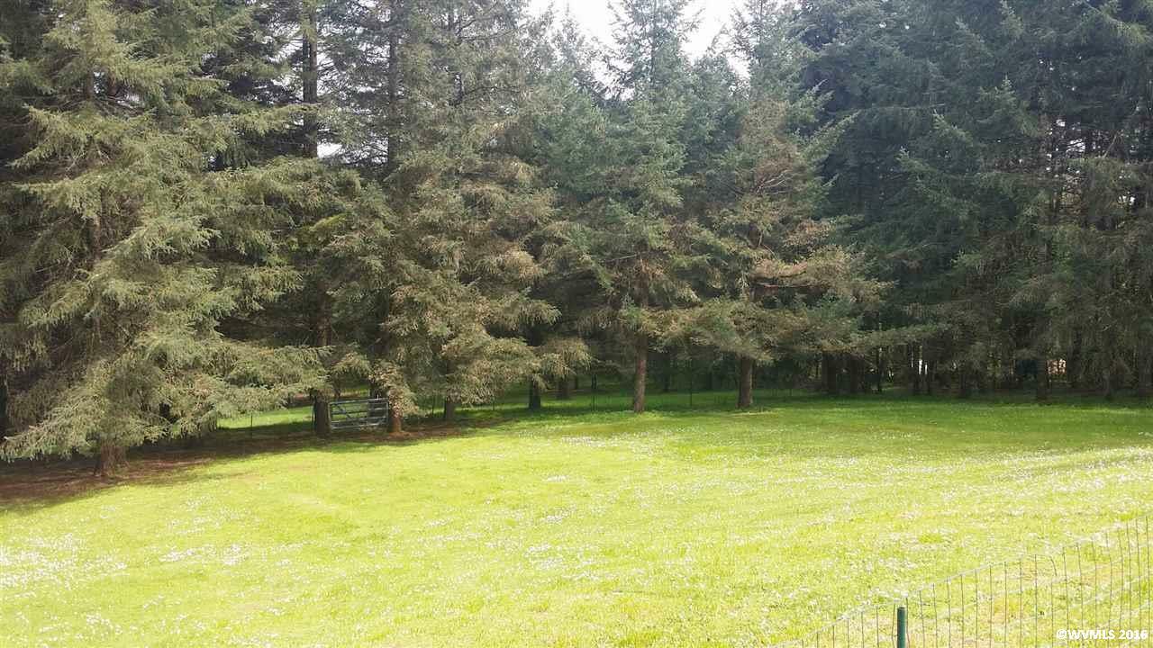 14904 Ferns Corner Rd, Monmouth, OR - USA (photo 5)