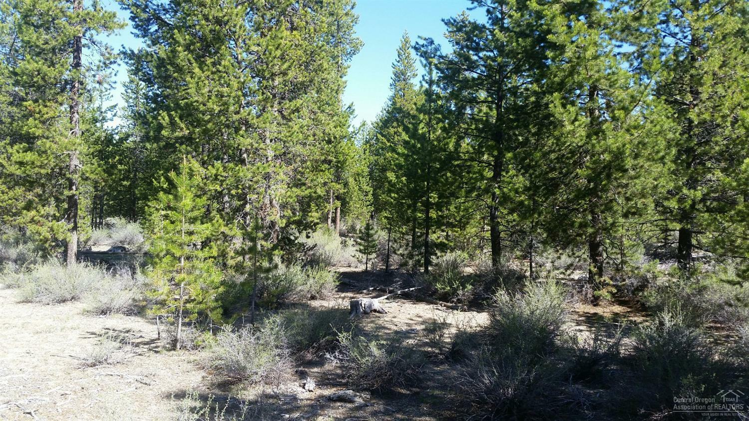 13 Lot Gracies Road, Gilchrist, OR - USA (photo 4)