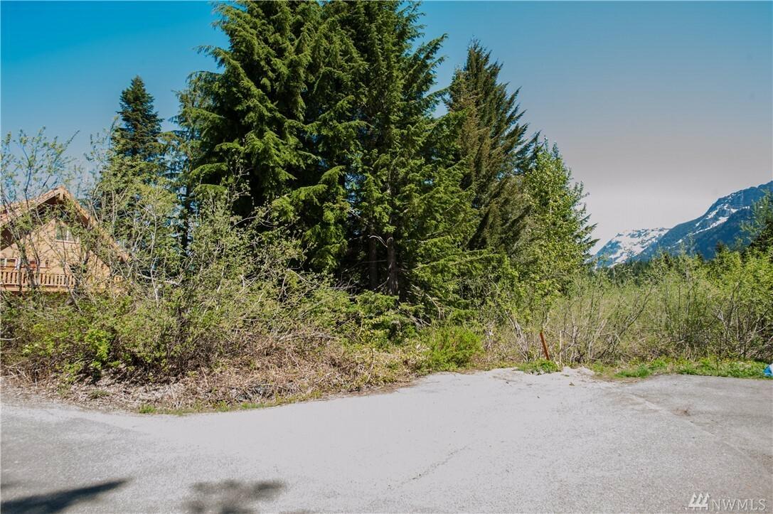 41 Romans Ct, Snoqualmie Pass, WA - USA (photo 3)