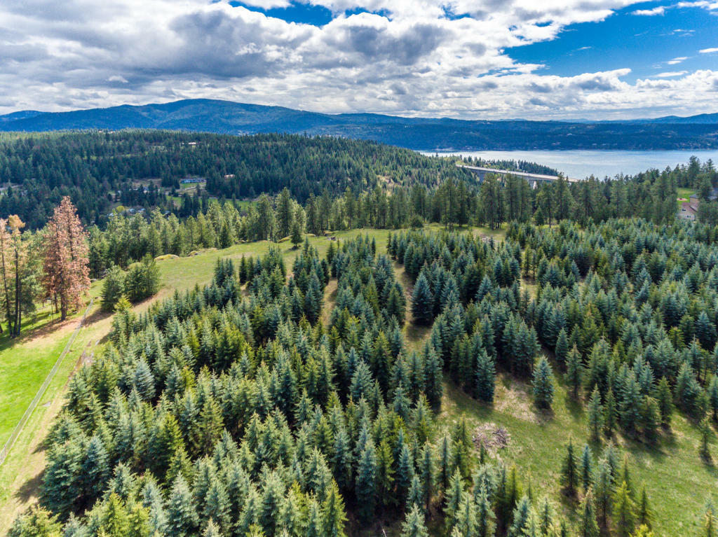 Nna E Mullan Trail Road, Coeur D'alene, ID - USA (photo 4)