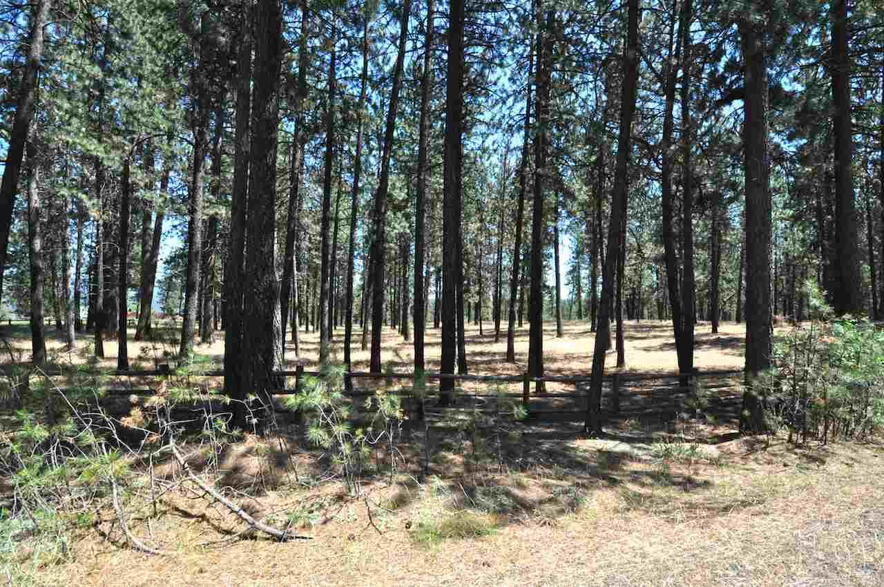 00 S Cedar Rim Ln, Spokane, WA - USA (photo 1)