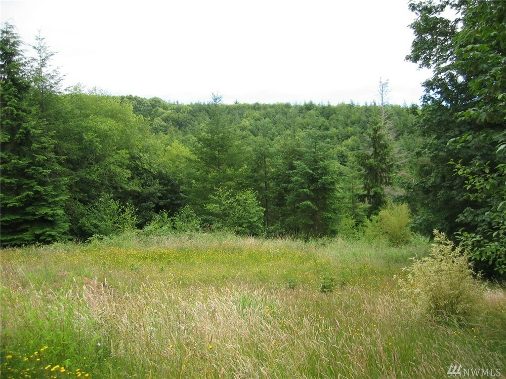 56 Fernhill Lot 2, Cathlamet, WA - USA (photo 4)