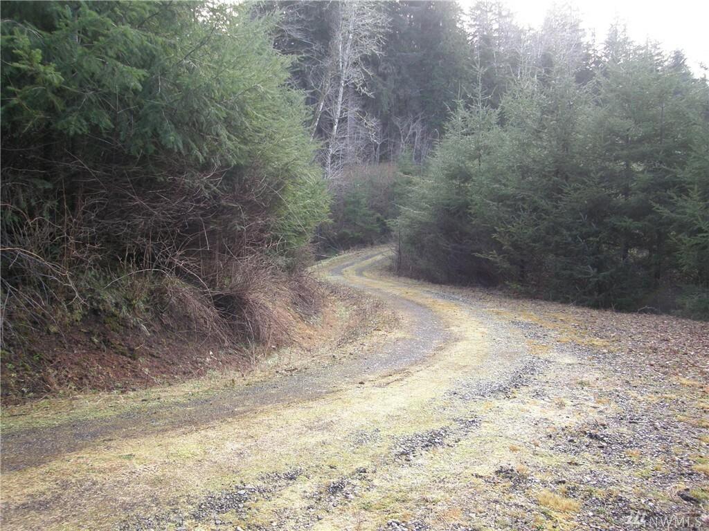 0 State Route 107, Montesano, WA - USA (photo 5)