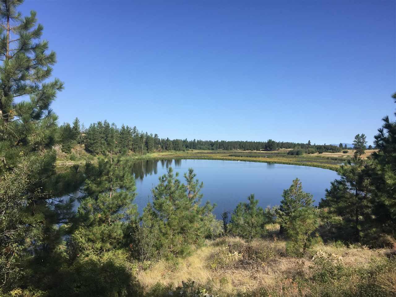 24500 W Kitt Rd, Spokane, WA - USA (photo 1)