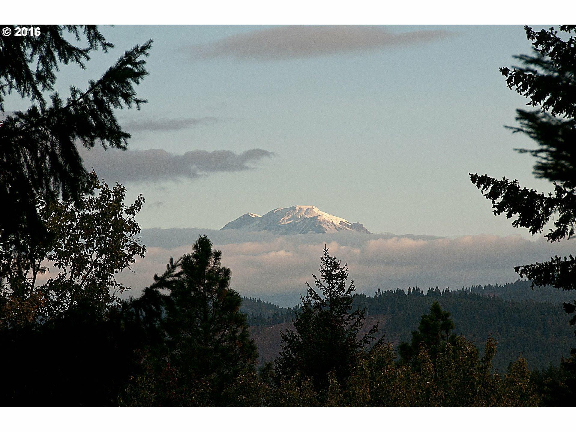 12 Husum Hills Dr, Husum, WA - USA (photo 3)