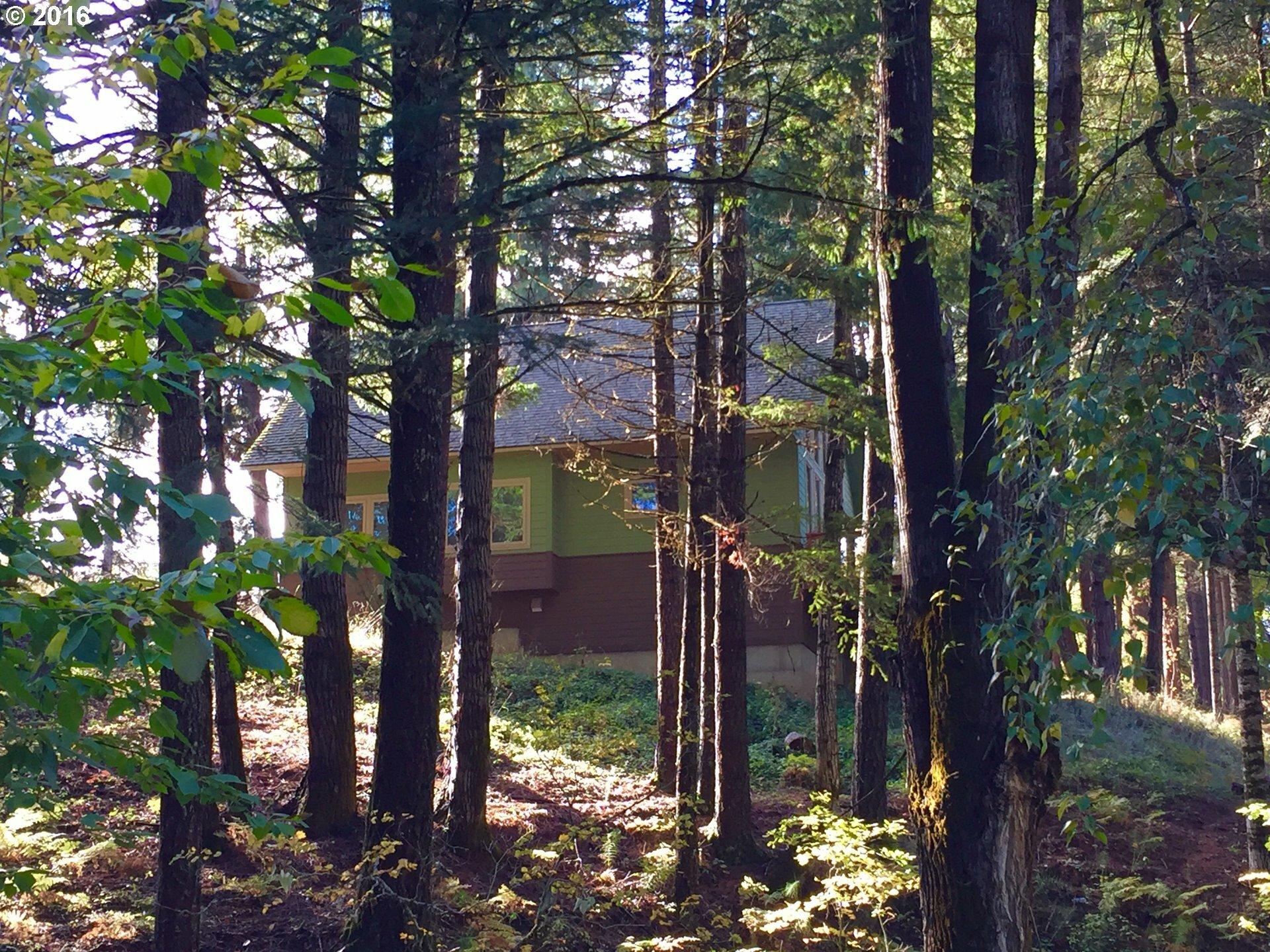 12 Husum Hills Dr, Husum, WA - USA (photo 5)