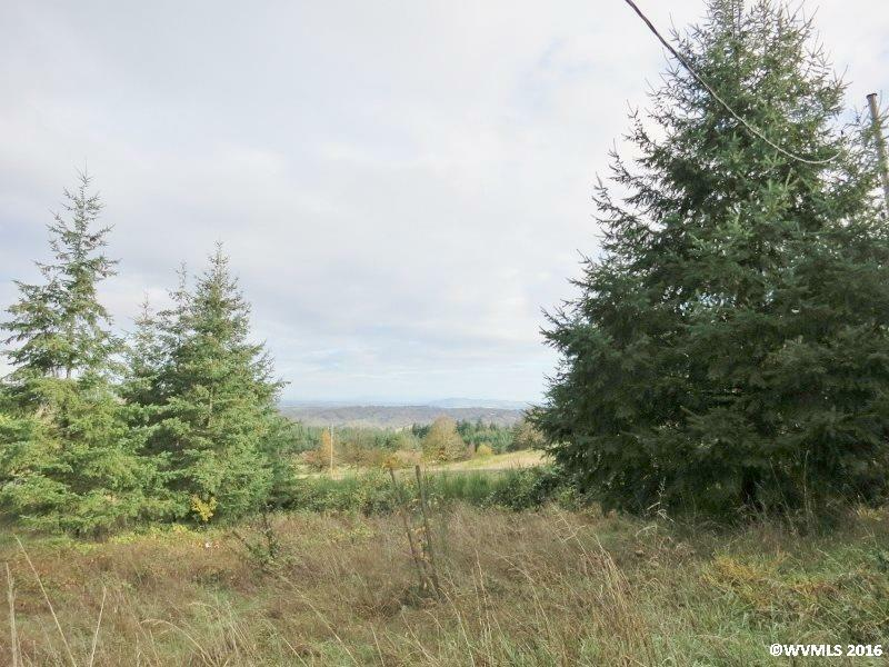 2045 James Howe Rd, Dallas, OR - USA (photo 1)