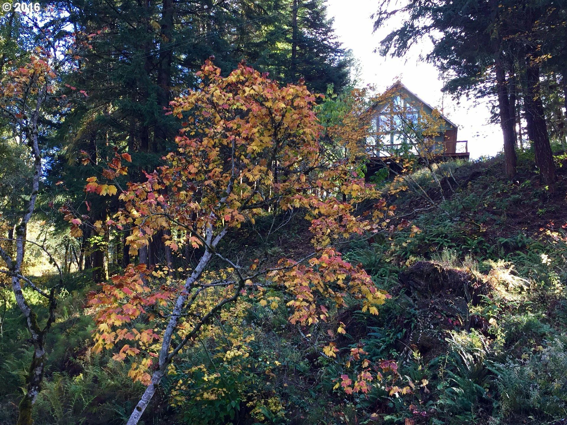 12 Husum Hills Dr, White Salmon, WA - USA (photo 2)