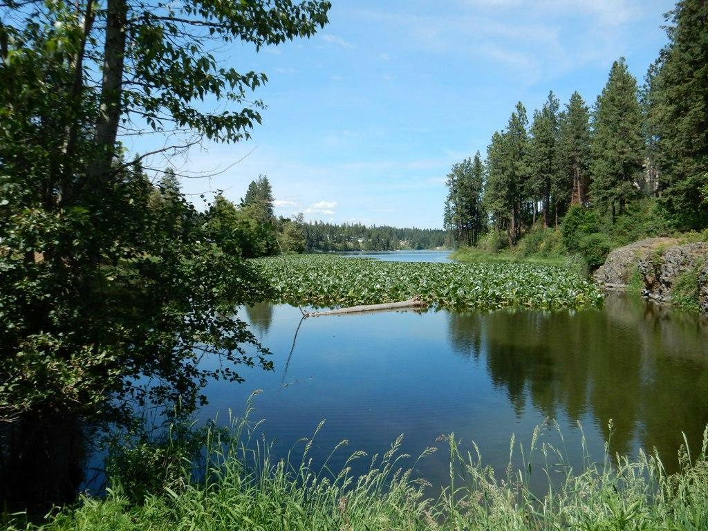 10417 N Lakeview Dr B, Hayden, ID - USA (photo 2)