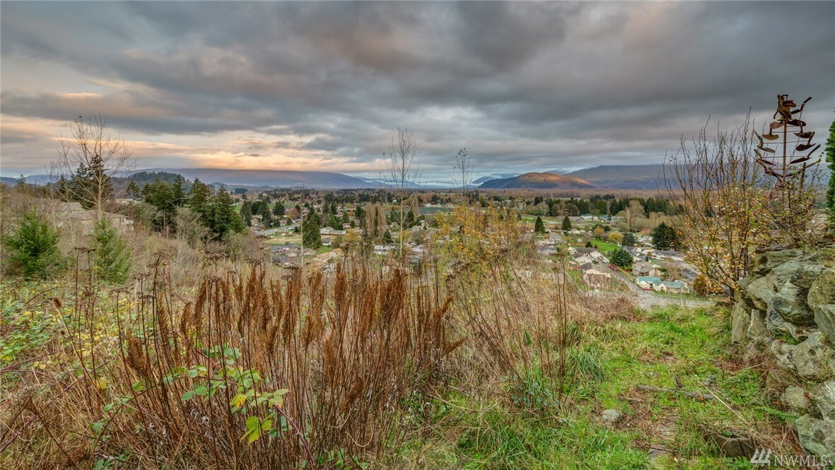 788 Overlook Lane, Burlington, WA - USA (photo 1)