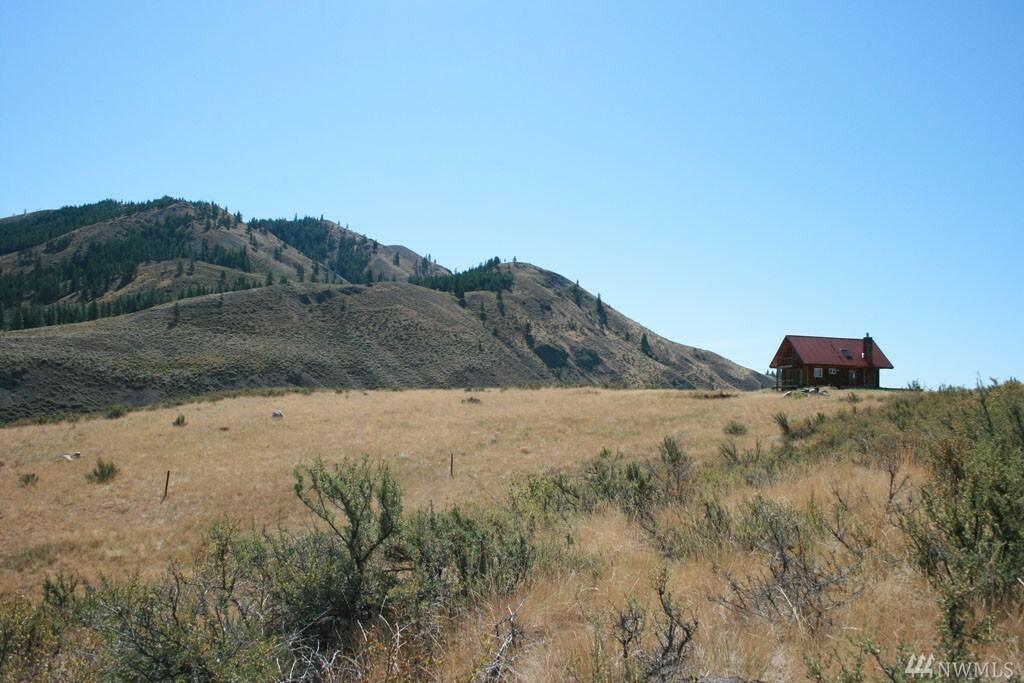 52 Davis Lake Ranch Rd, Winthrop, WA - USA (photo 4)