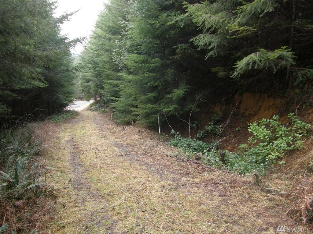 230 Arrowhead Lane, Elma, WA - USA (photo 2)