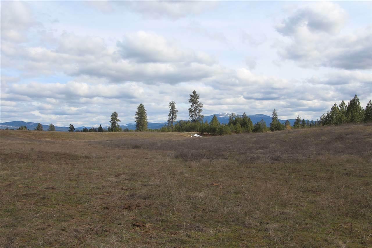 41xxx N Hardesty Rd, Elk, WA - USA (photo 1)