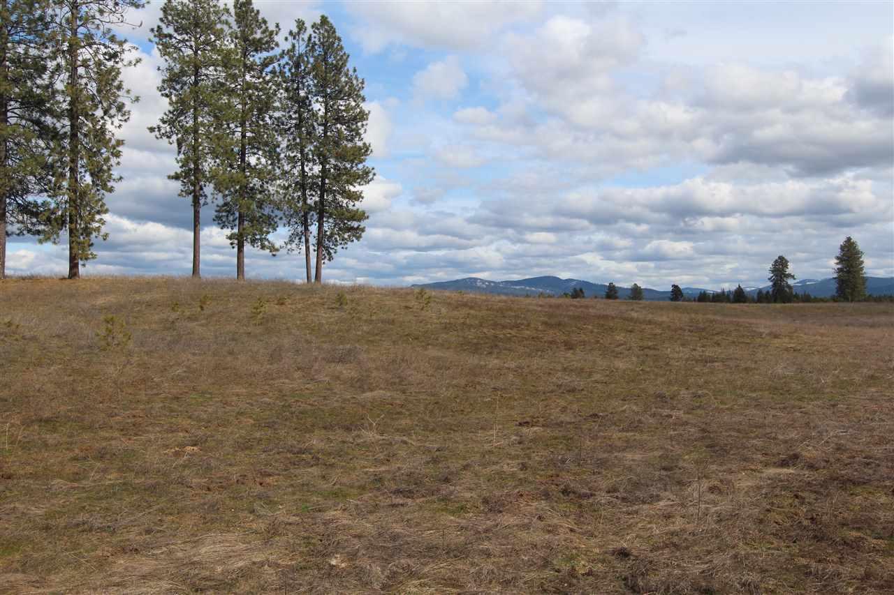 41xxx N Hardesty Rd, Elk, WA - USA (photo 5)