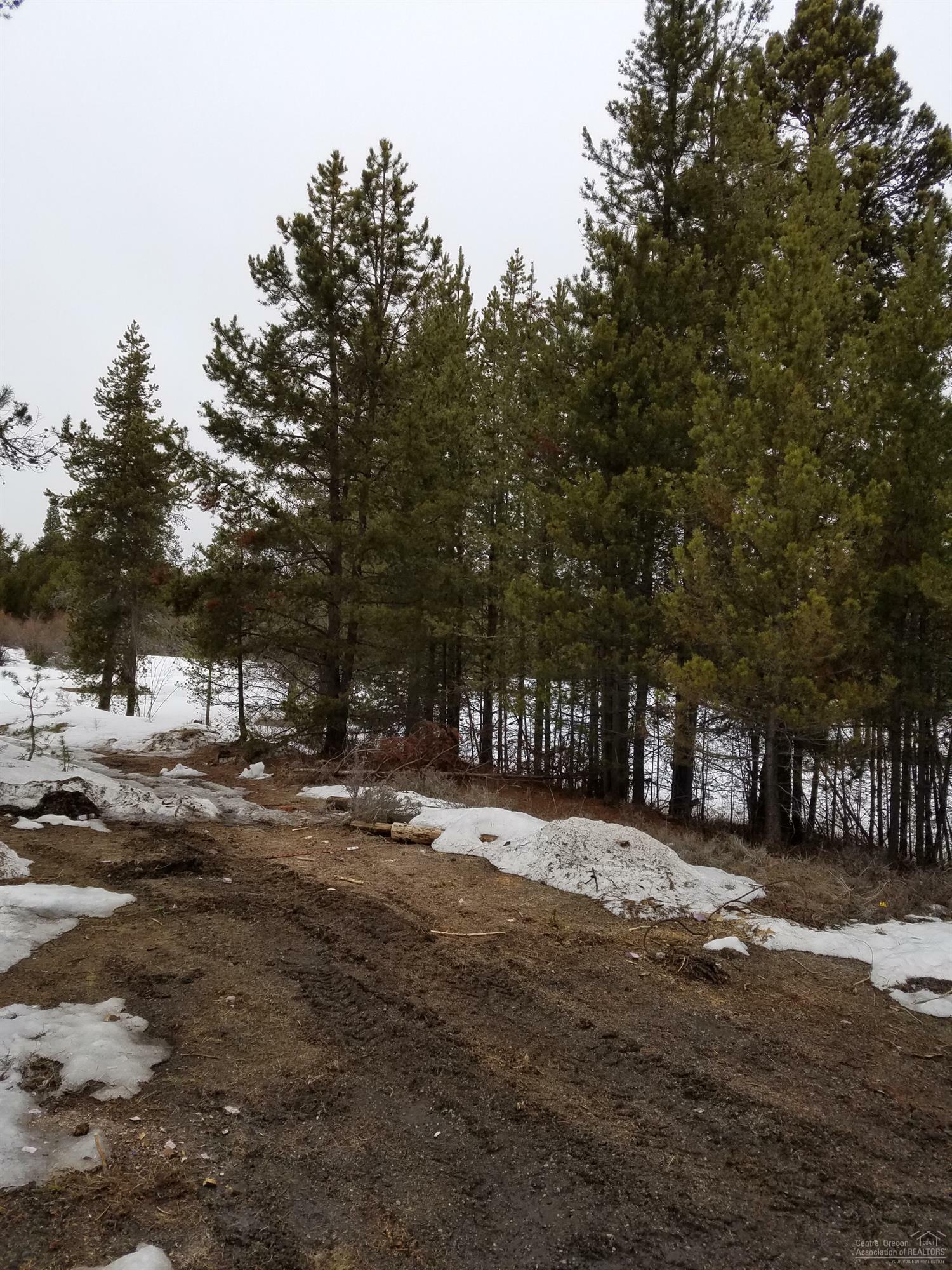 15794 Jackpine Road, La Pine, OR - USA (photo 1)