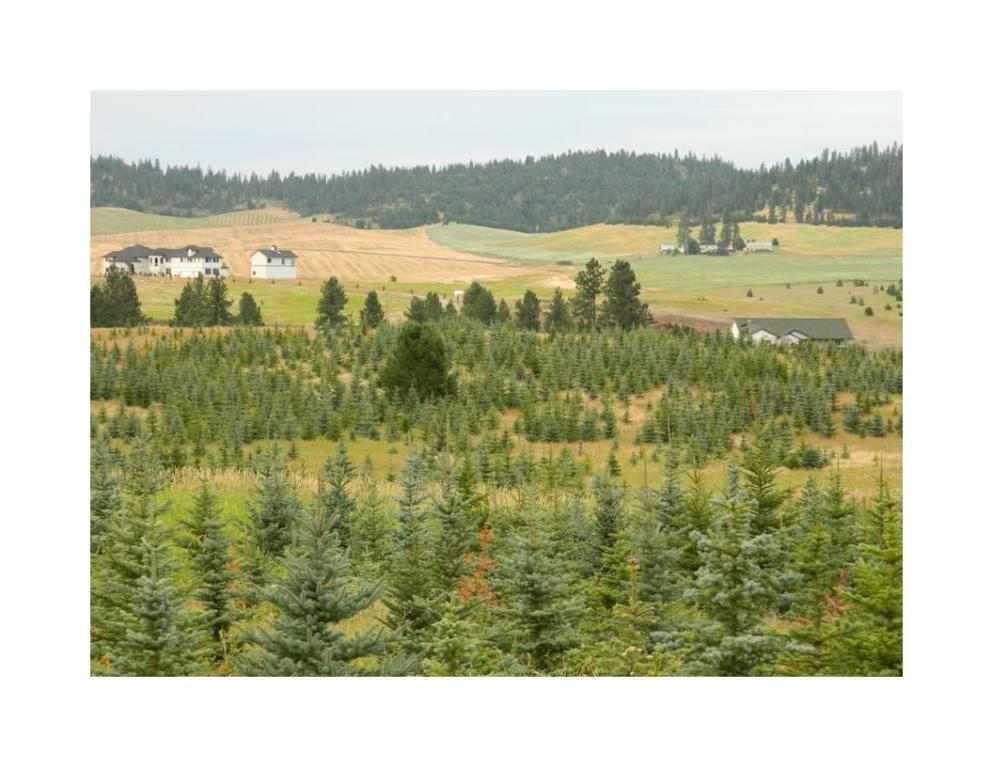 6512 W Conkling Rd, Worley, ID - USA (photo 1)