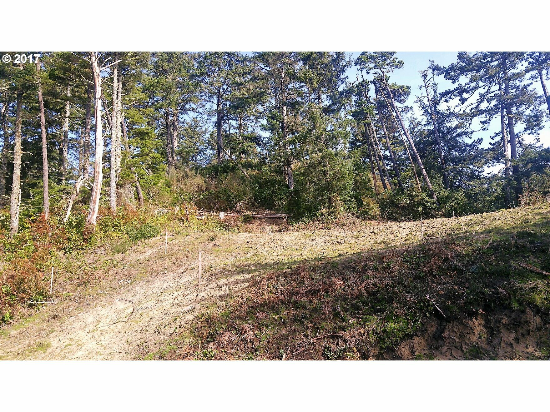 32480 Pine Road, Pacific City, OR - USA (photo 5)
