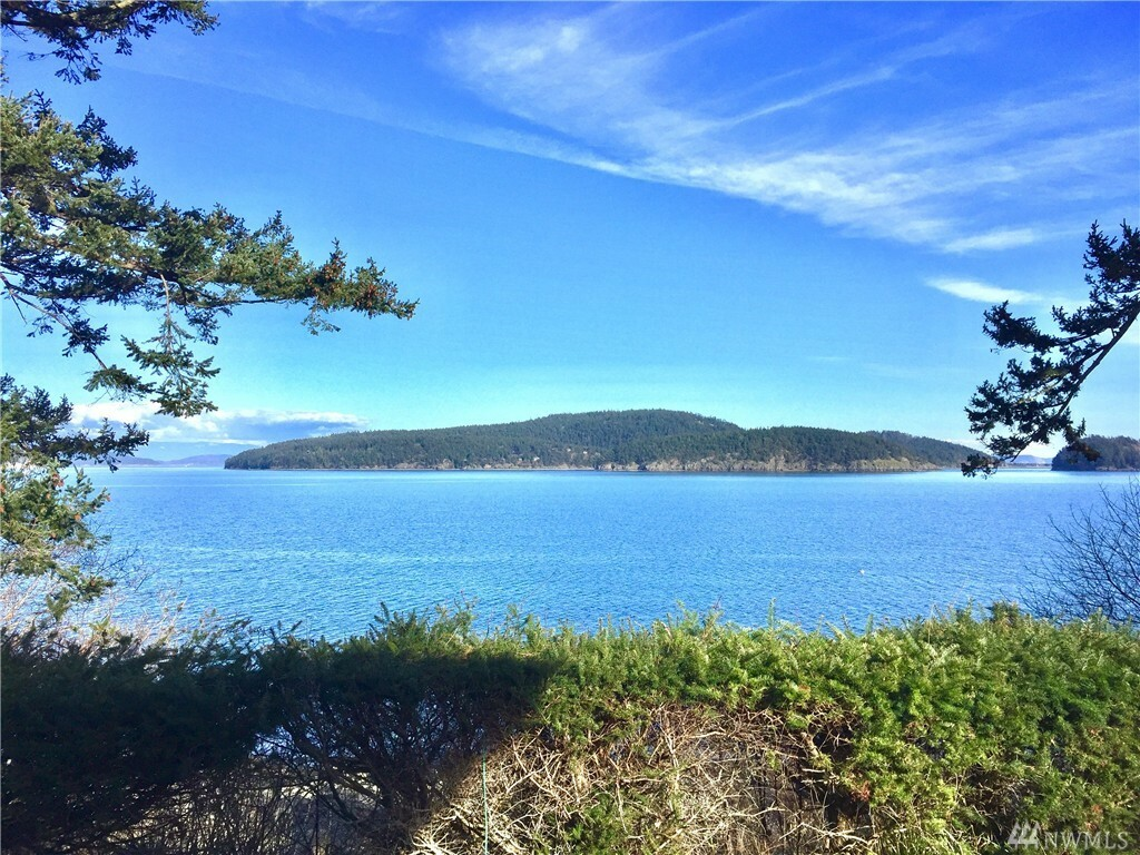 1401 Bakerview Rd, Lopez Island, WA - USA (photo 1)