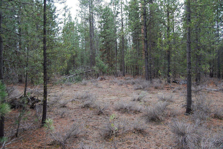 14801 Springwood Road, La Pine, OR - USA (photo 3)
