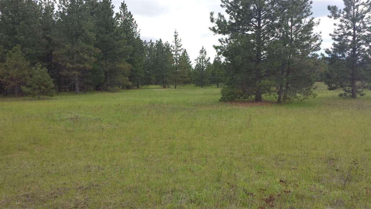 00 Oregon Rd, Elk, WA - USA (photo 2)