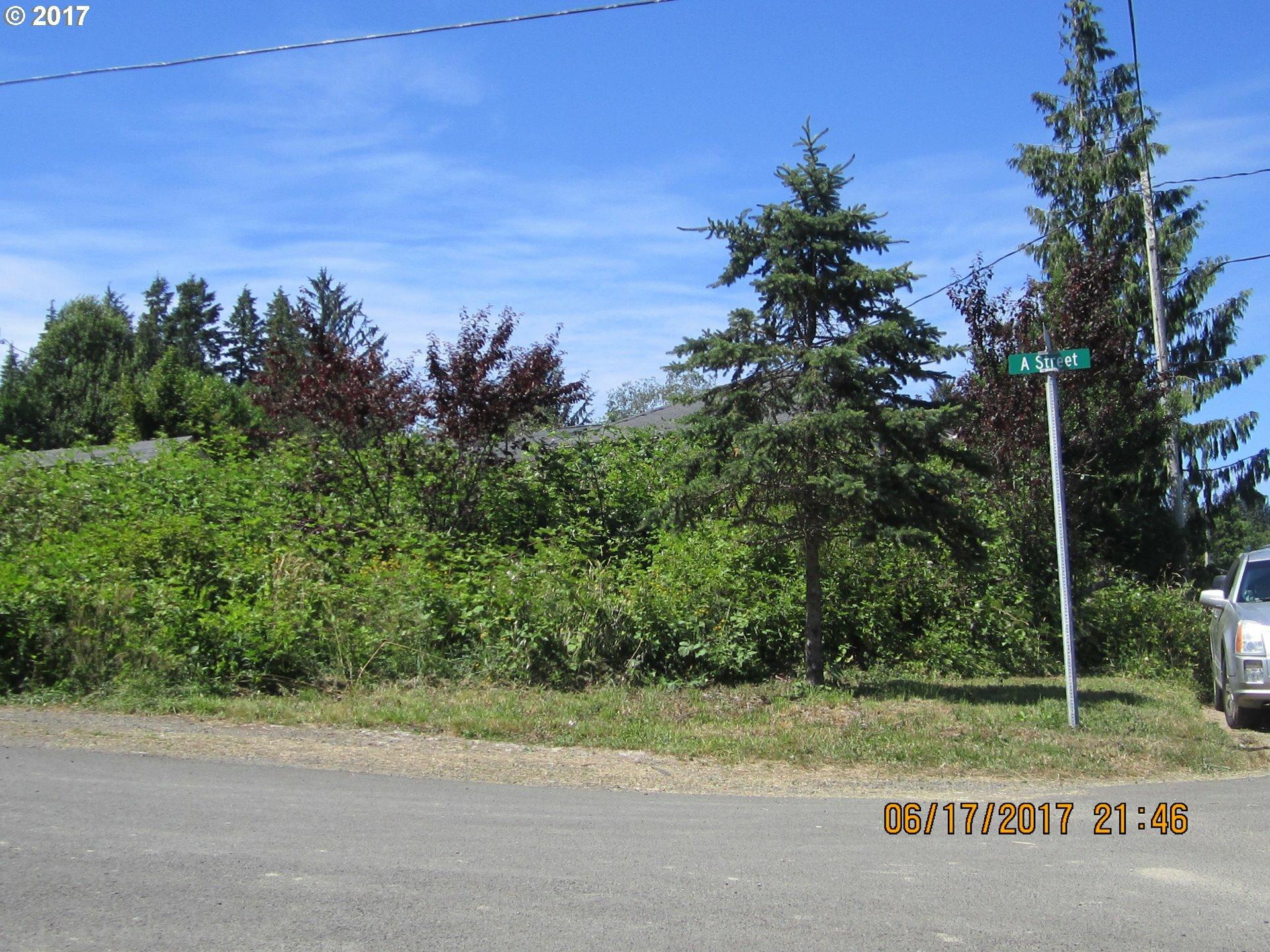 12895 A St, Nehalem, OR - USA (photo 1)