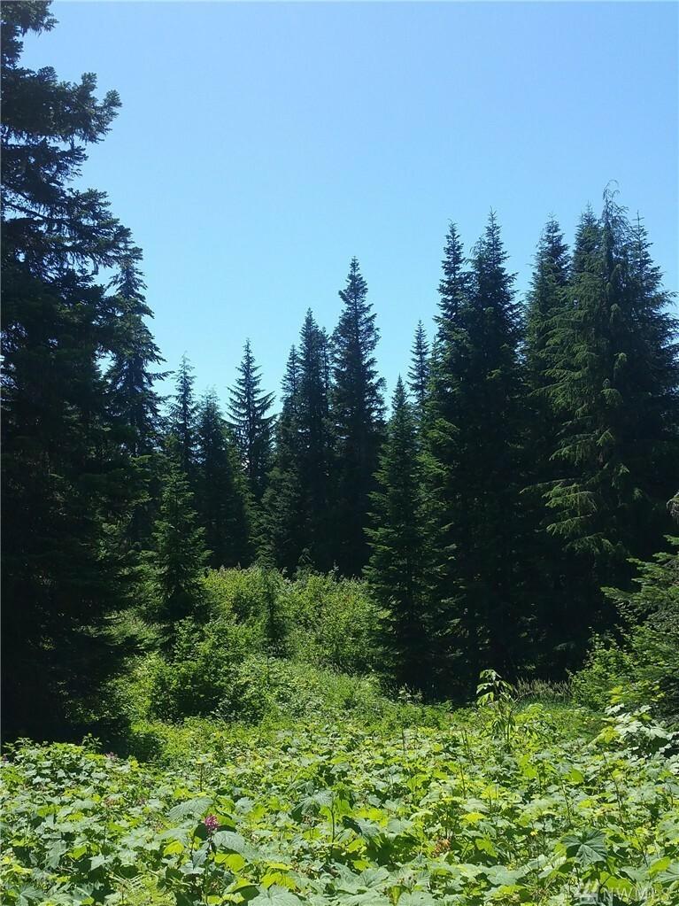 0 Huckleberry Peak Rd, Snoqualmie Pass, WA - USA (photo 2)
