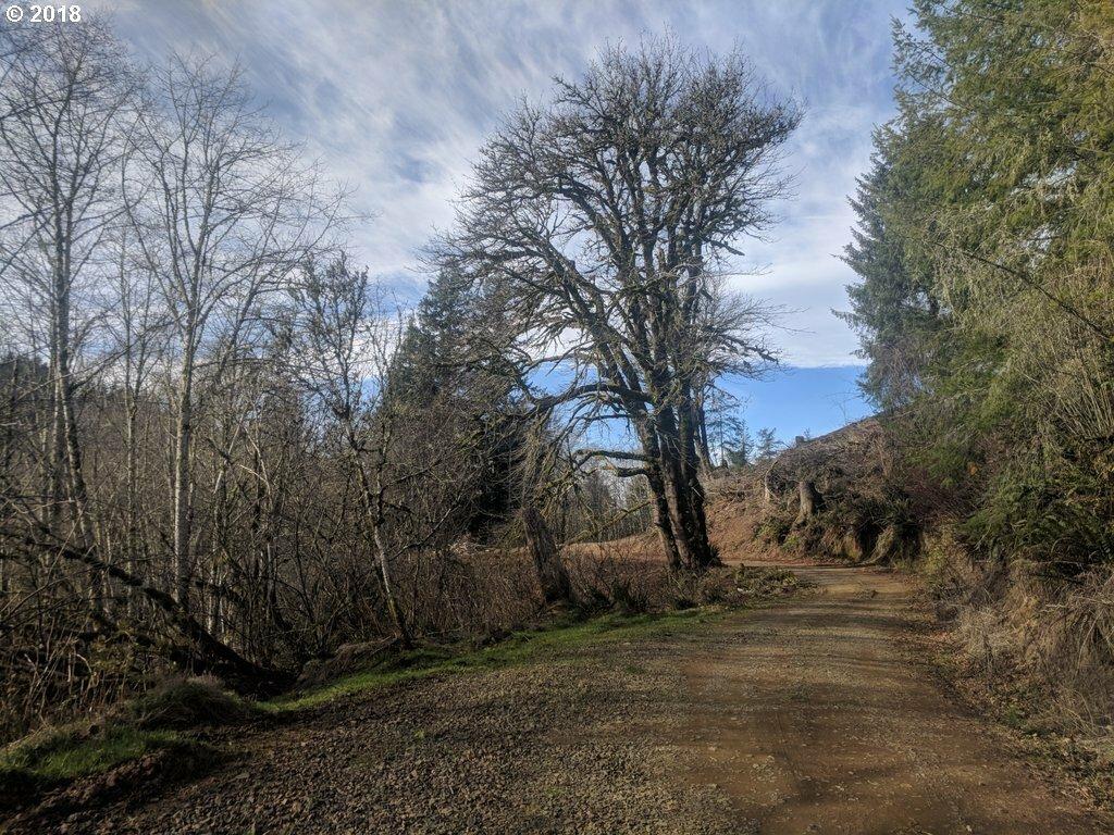 E Beaver Creek Rd, Cloverdale, OR - USA (photo 5)
