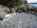 0 rebe road, orcas island