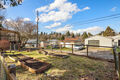Backyard/Garden Space
