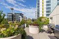 Seattle heights amenities
